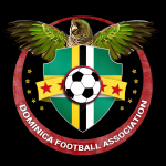 New DFA logo