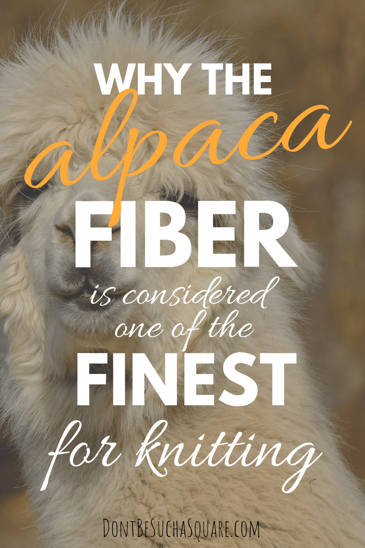Why the Alpaca Yarn is considered one of the Finest Knitting Yarns – Learn more about alpaca yarn at DontBeSuchaSquare.com #yarn #alpacayarn #knitting