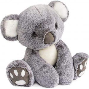 koala-histoire-d-ours