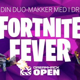 Fortnite Fever