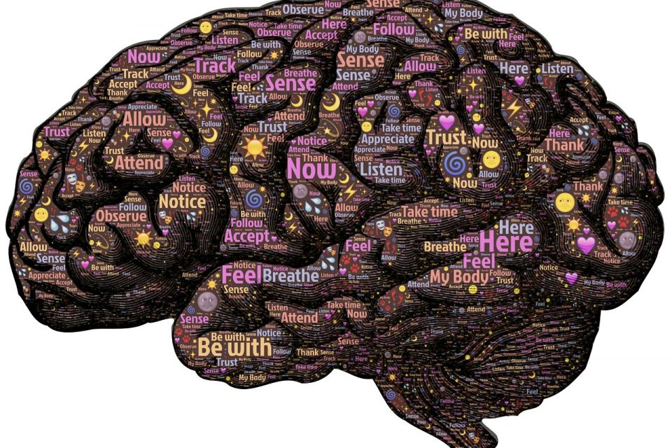 Brain myths - only using ten percent of your brain?