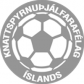 Islands træner forening