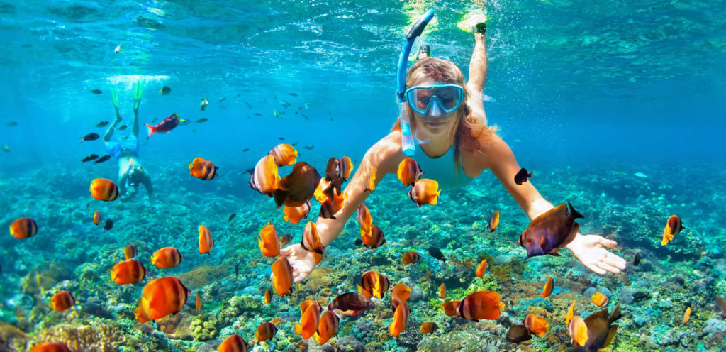 snorkelmasker, duikbril, duikmasker in den haag