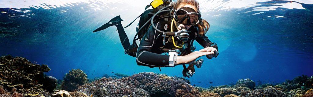 scuba skills update den haag