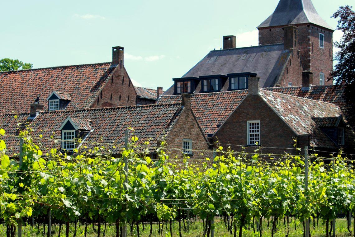 Kloosterwijn Sint-Catharinadal