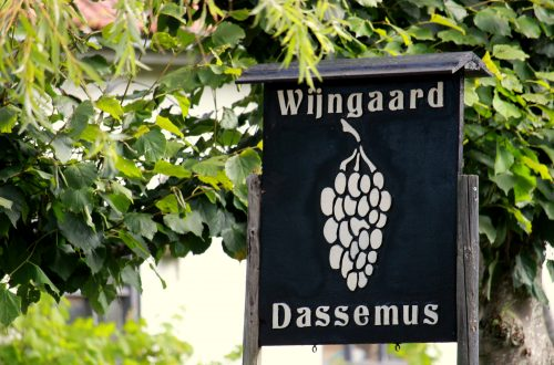 Open Dag wijngaarden
