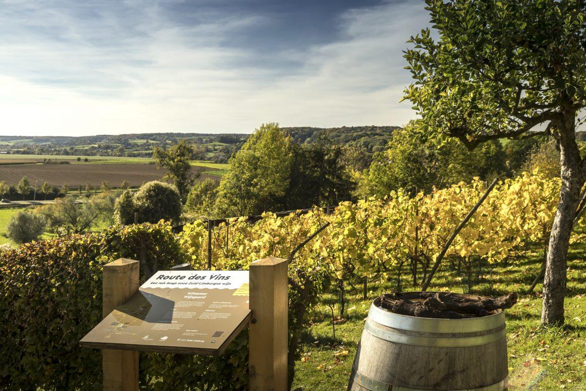 wijnroutes wijnregio zuid-limburg dutch wine nederlandse wijn