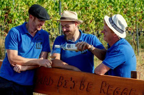 Wijnmakers uit Wierden