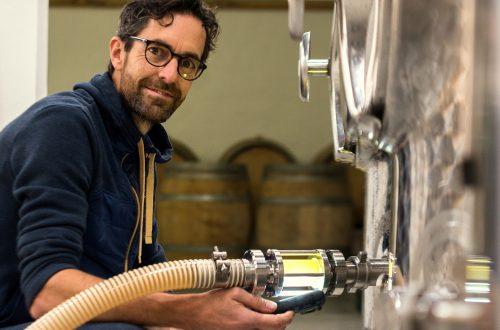 bruiswijnen domein holset wijnmakerij dutch wine nederlandse wijn