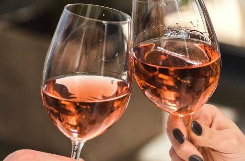 oranje wijngaard landman raalte nederlandse wijn dutch wine
