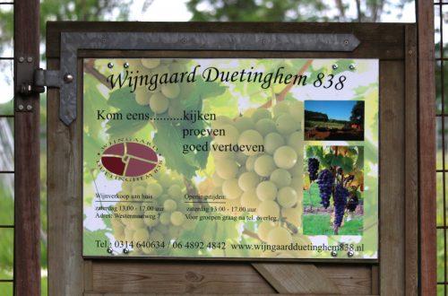 Wijngaard Duetinghem 838 Nederlandse wijn dutch wine