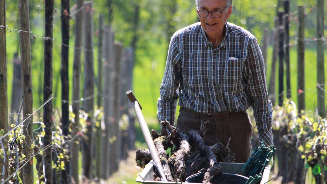klimaat nederlandse wijn