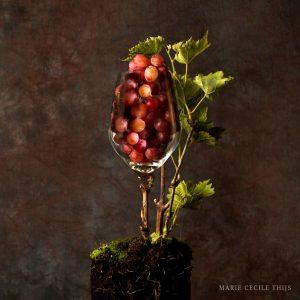 Voedselportret Terroir Nederlandse wijn dutch wijn