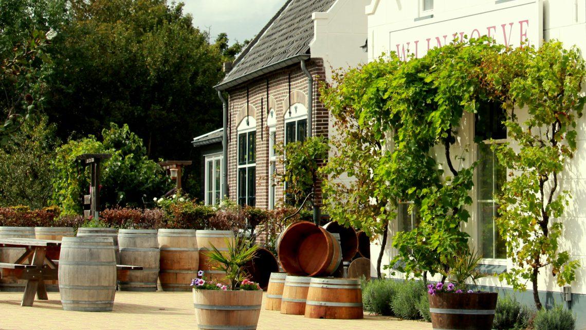 FAQ Nederlandse wijn