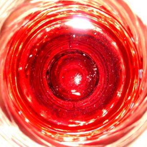 Wijn Flevoland Geert Horlings WIjngoed Wilgenhorst Zeewolde Nederlandse wijn dutch wine