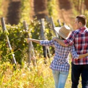 Wijnroutes Nederland wijntoerisme nederlandse wijn dutch wine
