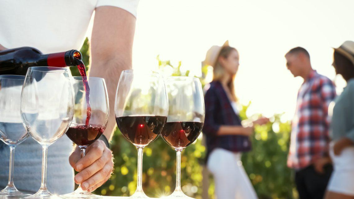 Nederlandse wijn kennismaken