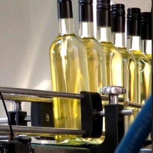 Zuid-Hollandse wijn Zuid-Holland
