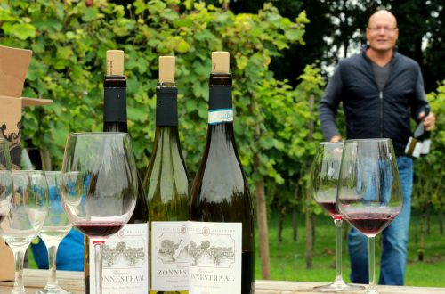 Euroblends wijngaard Zonnestraal