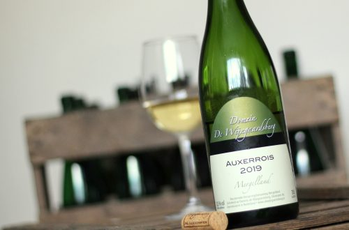 Auxerrois 2019 Wijngaardsberg