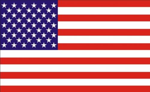 Amerikansk