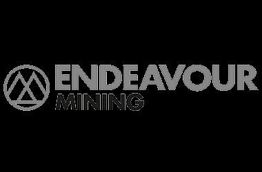 Logo Endeavour site
