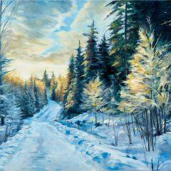 Skogsväg i vintersol