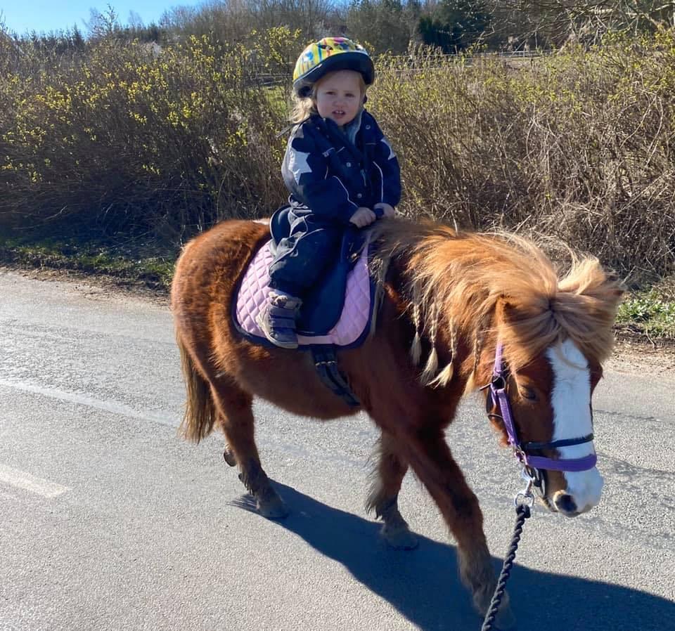Ponyridning til børn