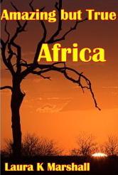 Afrique Acacia