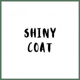 Shiny Coat