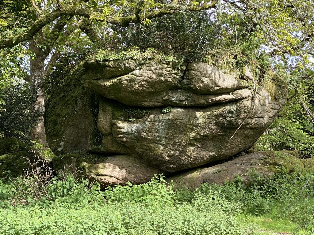 Face of old lady in rock