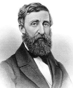 Thoreau_1050x700