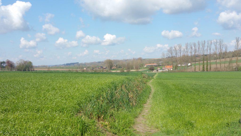 Op deze wandeling in en om het Burreken stap je grotendeels onverhard.