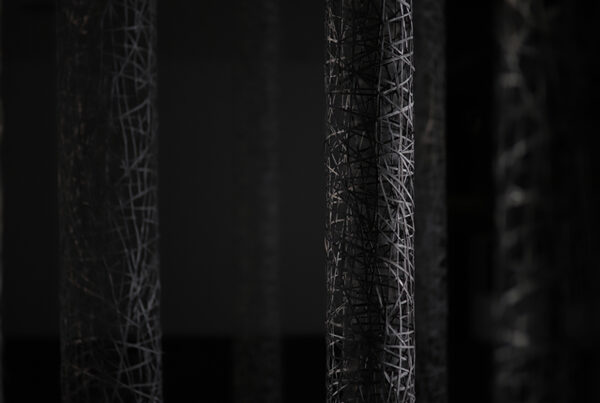 Suspended Forest