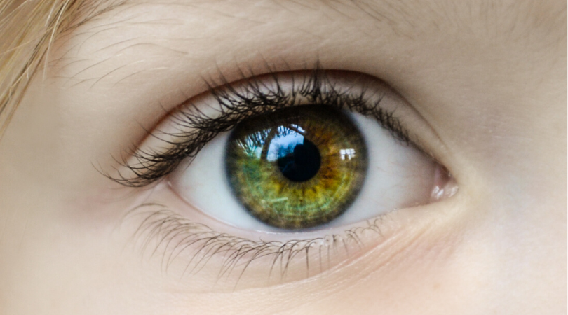 En närbild på ett öga.
