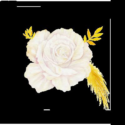 fioriWeb2