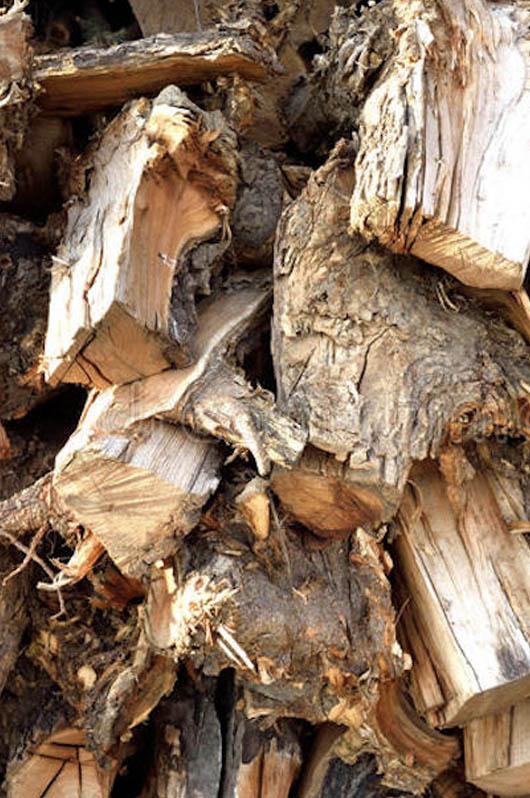 Acacia Firewood