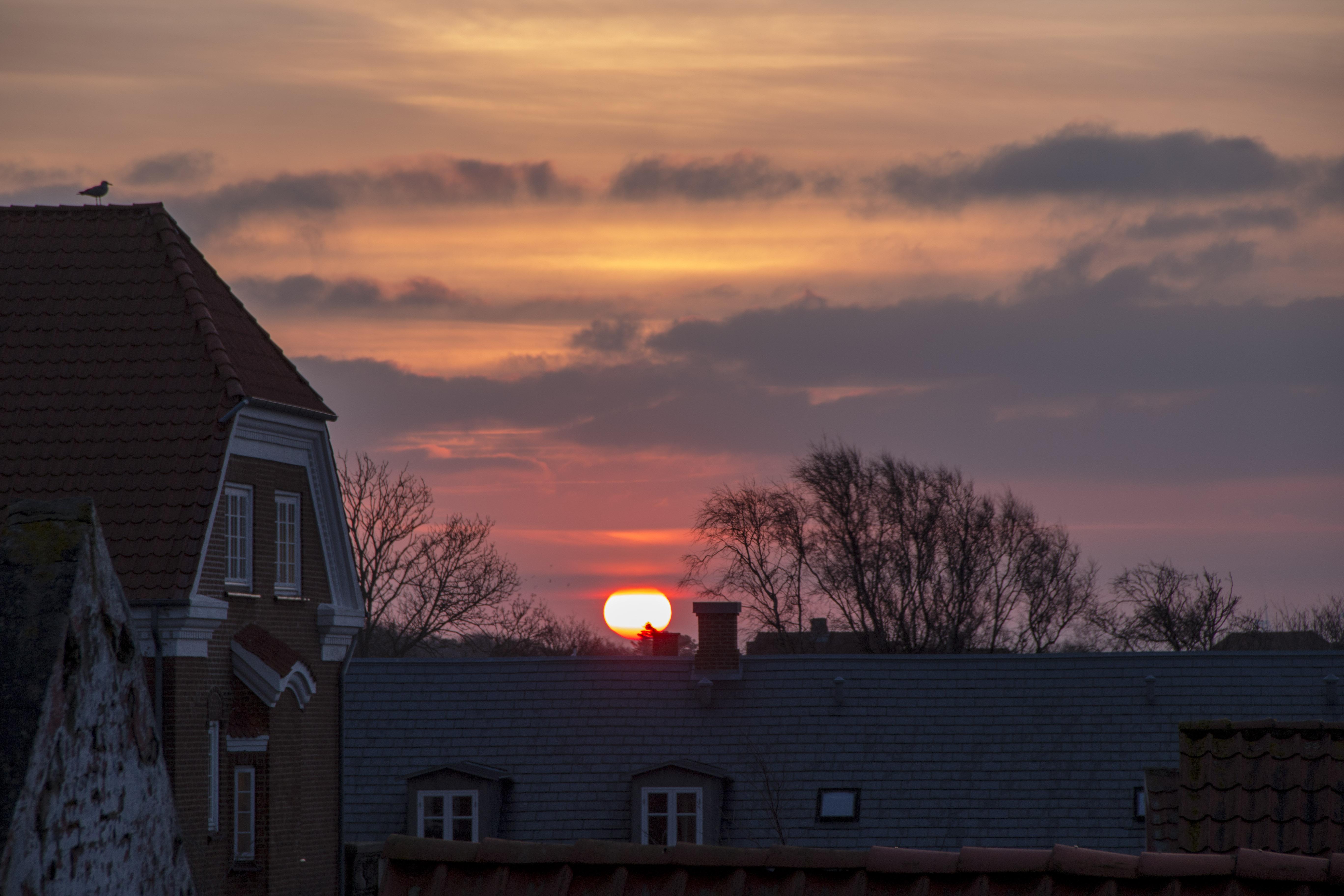 Morgen Sol