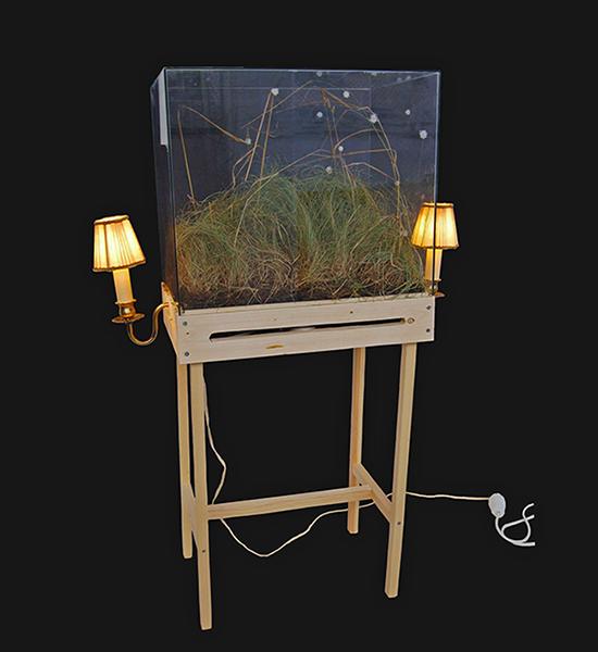 Konstinstallation Mysteriekabinett med lampor