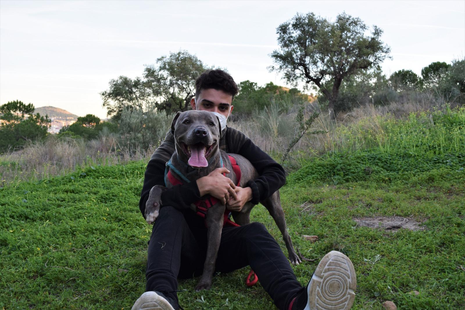 Rudy (17)