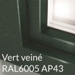 Vert veiné RAL6005