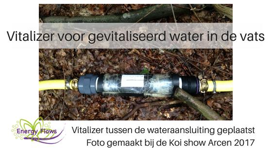 afb Energy Flows vitaliseert Euregio Koi Show
