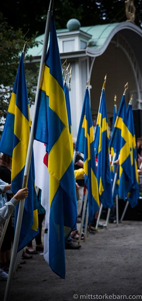 Sverige, flagg