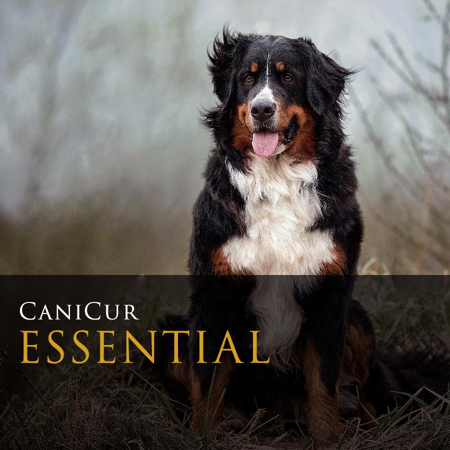 Essential (0.5kg)