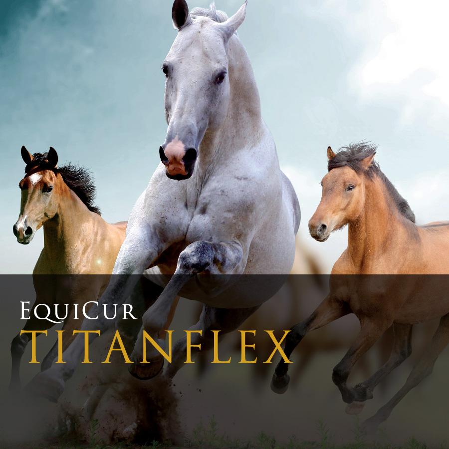 Titanflex (1kg)