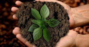Nachhaltig imkern Teil 3: Let's talk!