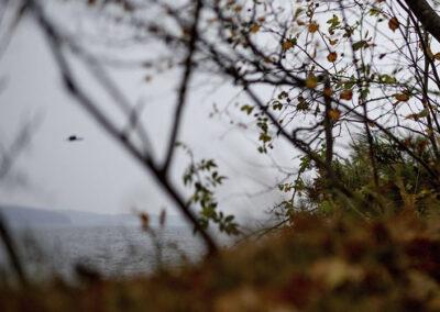 galleri 11-fotokunst-ersted.photo