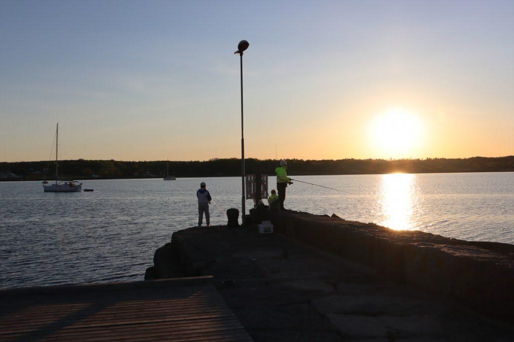 Fiskere og seilbåter i soloppgang i Nevlunghavn