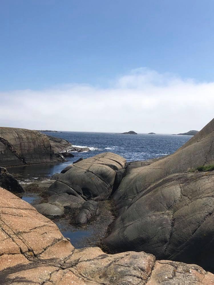 Rusk i forgasseren, men nyter denne utsikten utover fjorden med Skarvane i bakgrunnen