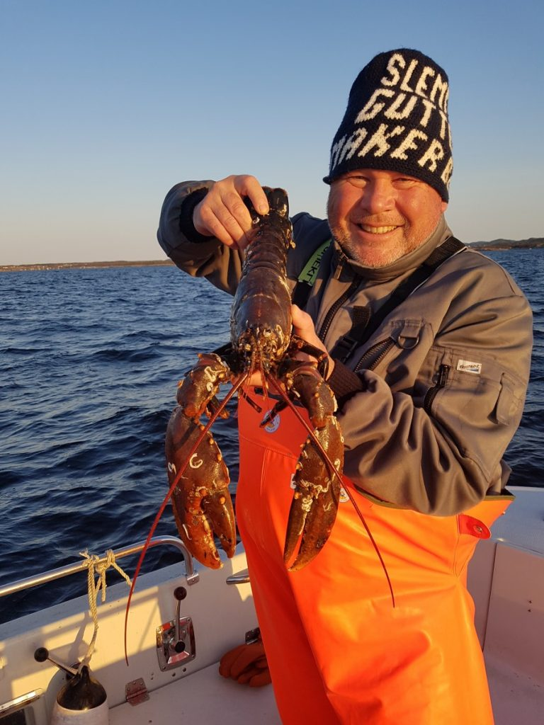En litt for stor hummer, måtte kastes ut igjen i hummer fiske. Holdes her av Erik Thorstein